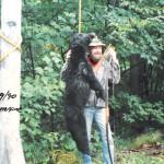 bear_1990_leon