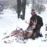 deer_1994_brian